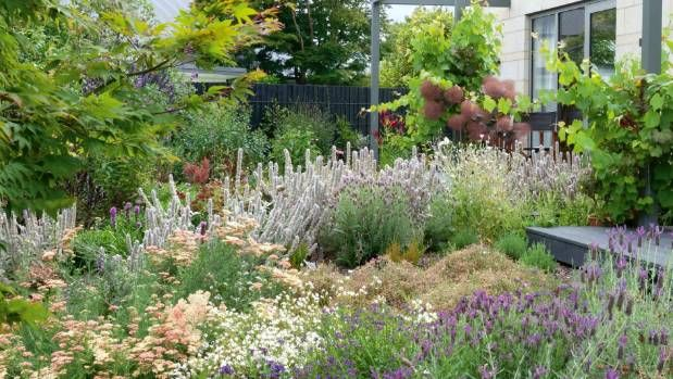 Colleen Foley-Smith's Christchurch garden is full of flowers and colour.