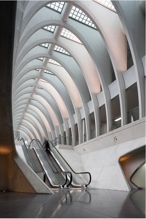 Unveils High Speed Rail Station in Belgium By Santiago Calatrava Photos by: Tim Van de Veld