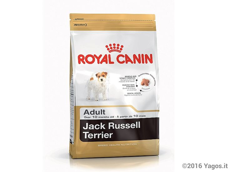 Alimento per cani Jack Russell Terrier Adult ROYAL CANIN