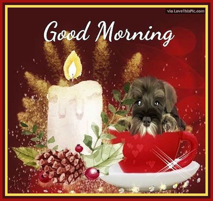Good Morning Image Quote With Dog And Christmas Candle morning good morning morning quotes good morning quotes morning quote good morning quote cute good morning quotes christmas good morning quotes good morning quotes for christmas