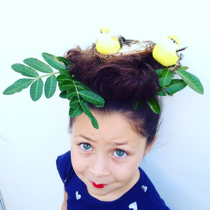 Bird Nest For Crazy Hair Day Crazy Hair Day Pinterest