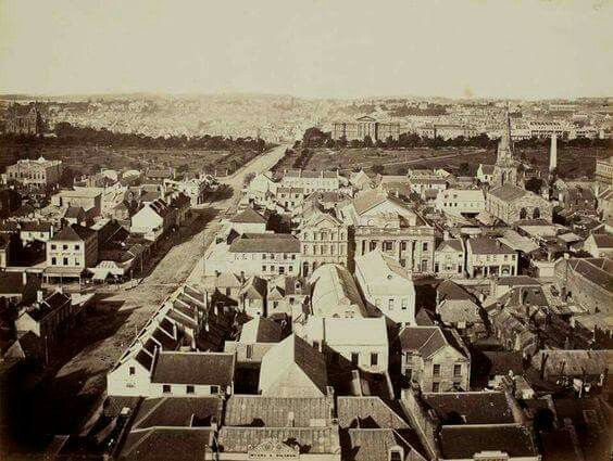 View from the Town Hall tower in Sydney in 1873.Looking across Hyde Park to the Museum and William St.