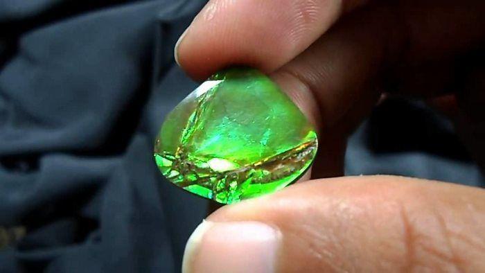 Το Ammolite, έναν σπάνιο οργανικό πολύτιμο λίθο που βρέθηκε στα Βραχώδη Όρη. Μερικοί λένε ότι είναι ο σπανιότερος πολύτιμος λίθος στον κόσμο.
