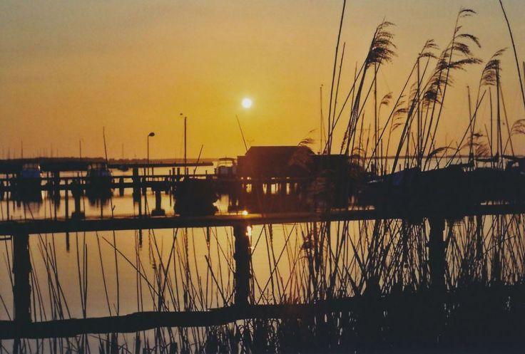 Sommer 15 (c) Lomoherz (25) Ribnitz-Damgarten #sunset