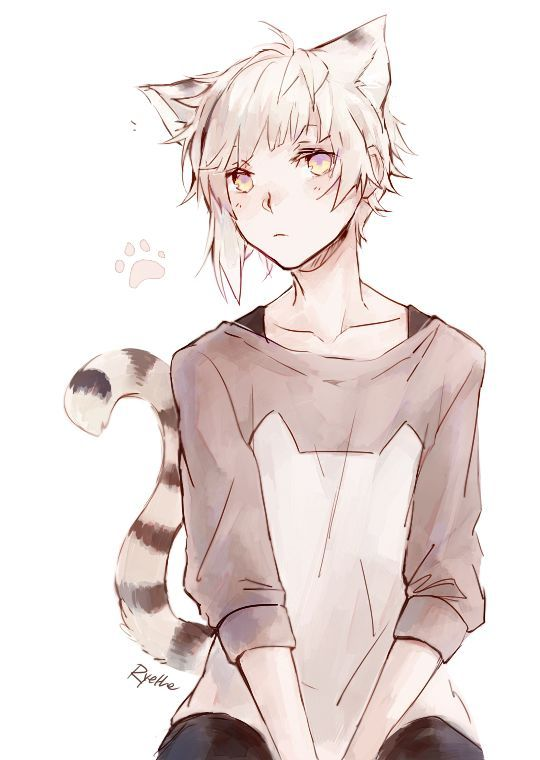 Bungou Stray Dogs | Nakajima Atsushi and like OMG! get some yourself some pawtastic adorable cat apparel!