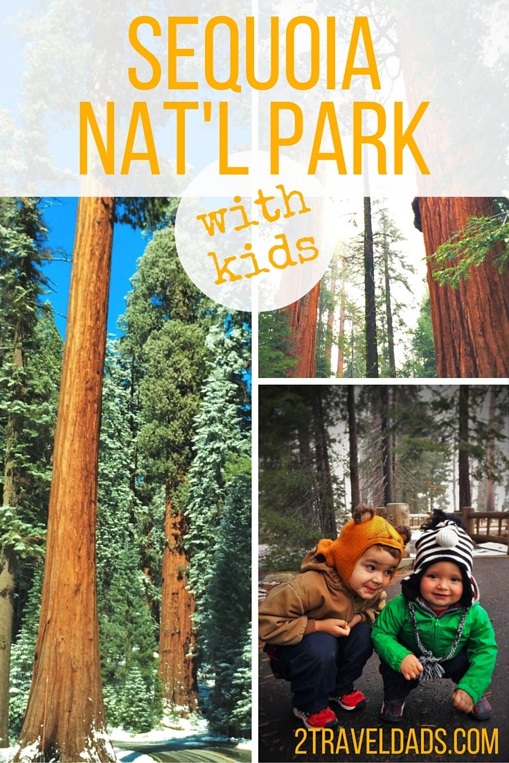 What are the sure-fire activities in Sequoia National Park with kids? Hikes and sights for any weather. 2traveldads.com
