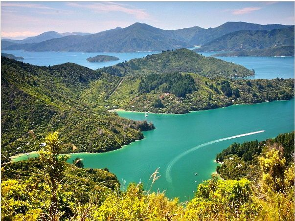 Queen Charlotte Track, New Zealand  - This weeks Travel Pinspiration on the blog!