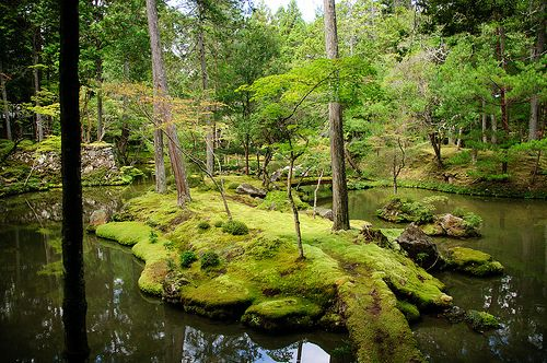 Kyoto Moss Temple - Kokedera
