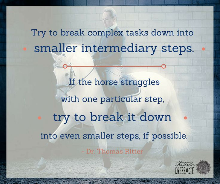 """""""Try to break complex tasks down into smaller intermediary steps. If the horse struggles with one particular step, try to break it down into even smaller steps, if possible."""" - Thomas Ritter artisticdressage.com"""
