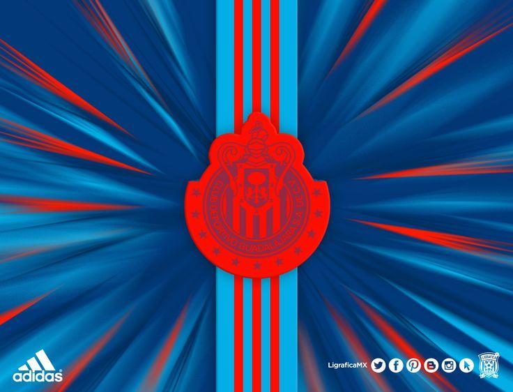 Mejores 680 imgenes de club guadalajara en pinterest chivas chivas 2014 ligraficamx 150314ctg adidas mxico voltagebd Choice Image