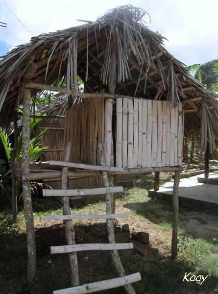 banga en bambou, plus typique de Madagascar que de Mayotte