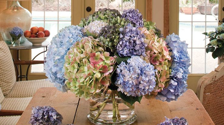The Secret to Drying Hydrangeas and Other Botanicals | Southern Living | Here's how to keep your hydrangea blooms colorful all year long.