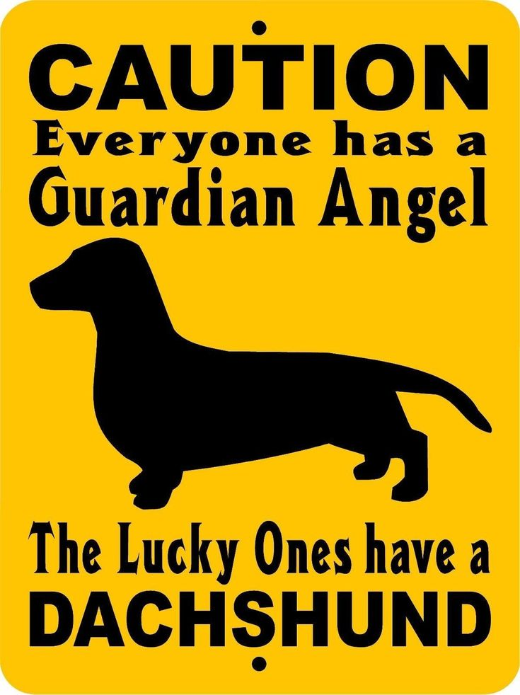 DACHSHUND DOG SIGN GADACH