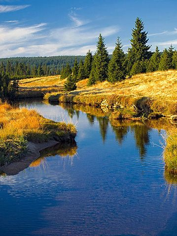Sapphire Creek in Jizerské mountains (North Bohemia), Czechia