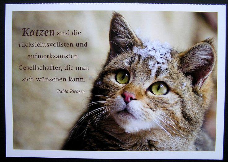 http://www.bkh-vom-loewenherz.de/assets/images/__57.JPG
