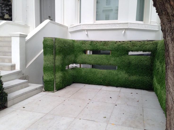 An interesting use of Soleirolia in a parking area which lets light into basement but gives evergreen screen claudia de Yong (thegardenspot) on Twitter