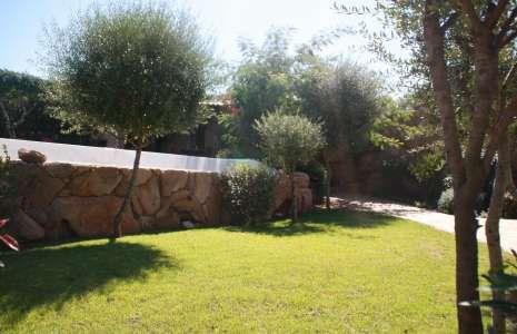 http://www.lavillapiana.com/villa-concadoro/location-villa-corse-du-sud-avec-piscine.html