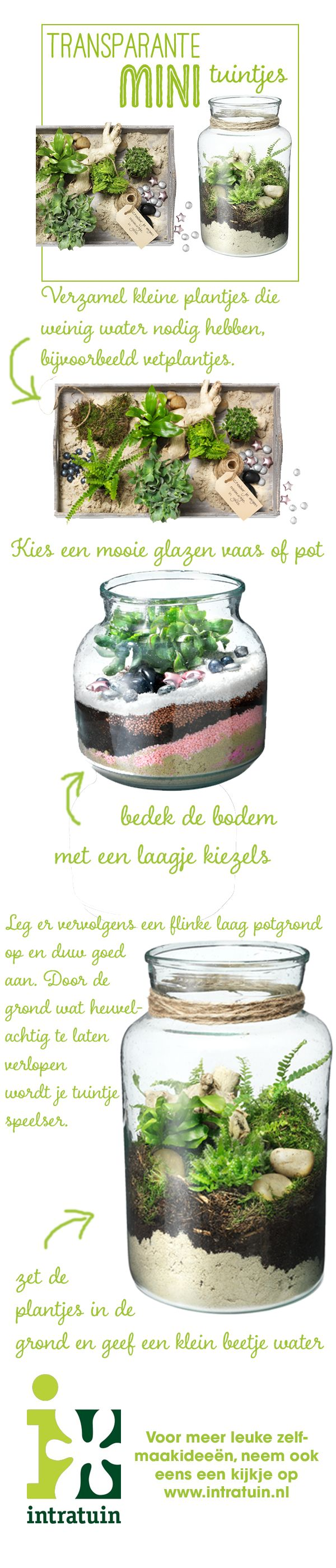 DIY minigarden
