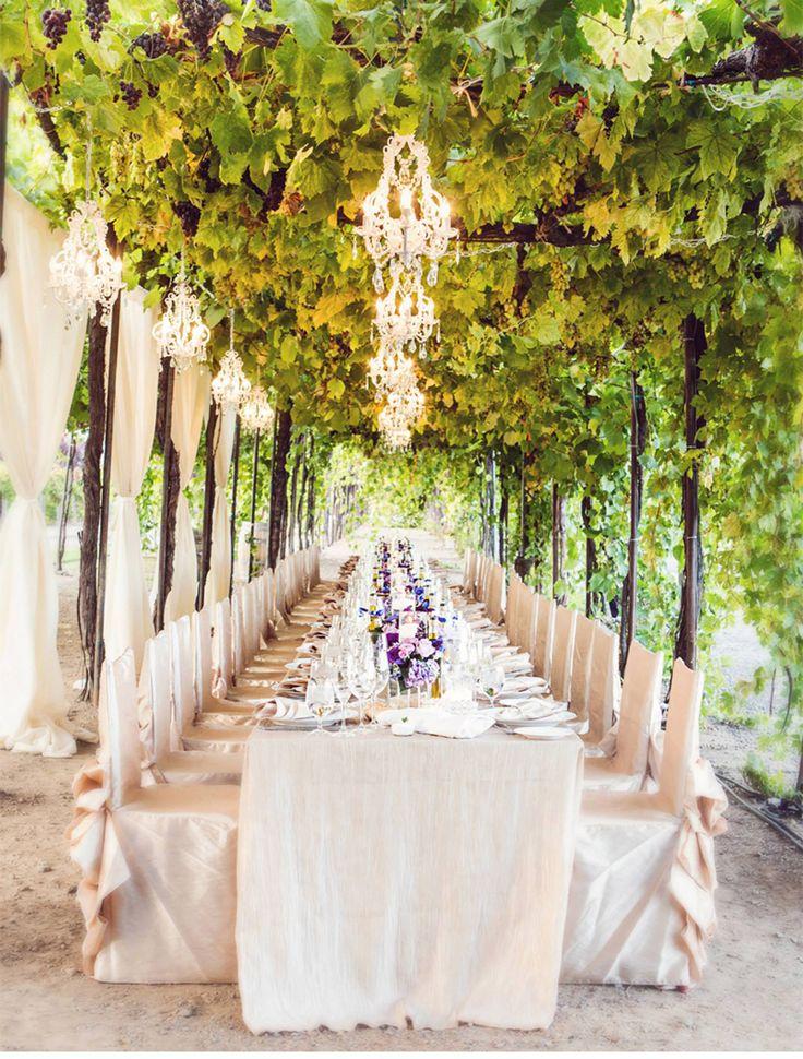 ぶどうの木 の下で披露宴 フランスの結婚式