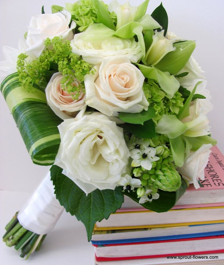 Bridal bouquet - all in creams and greens - baby green hydrangea and ornithogalum arabicum (sorry, there isn't an easier name for it), ladies' mantle, green ...