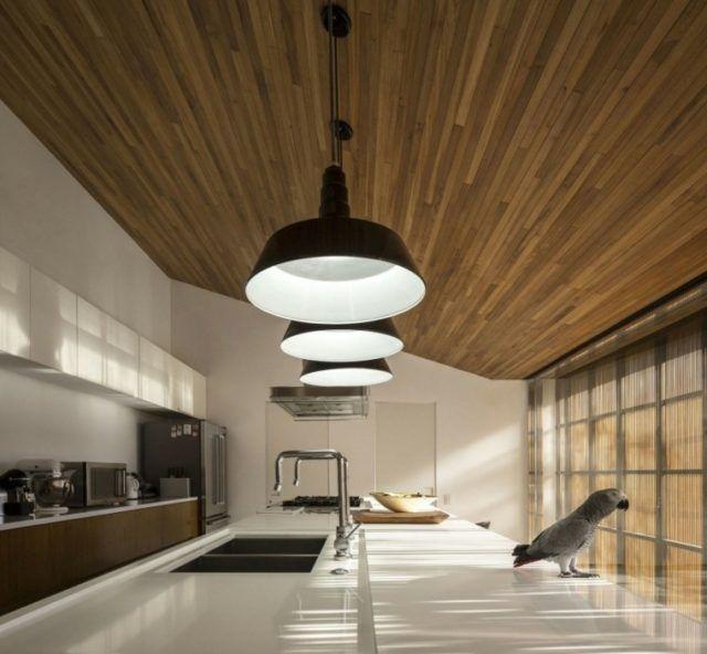 techos-de-madera-para-la-casa-cocina-moderna-loro-yaco