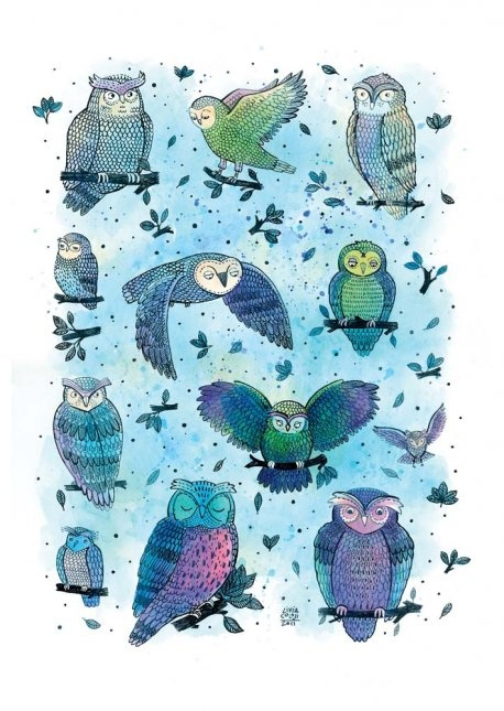Colorhood - Owls by Livia Coloji