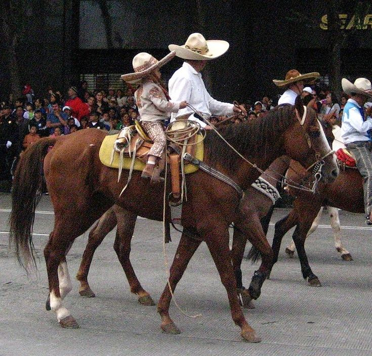988 best Charros and horses images on Pinterest | Horses ...