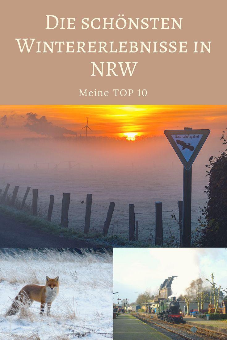 NATUR // WILDTIERE // SPEZIELLE WINTERANGEBOTE - so kennt ihr NRW im Winter sicher noch nicht