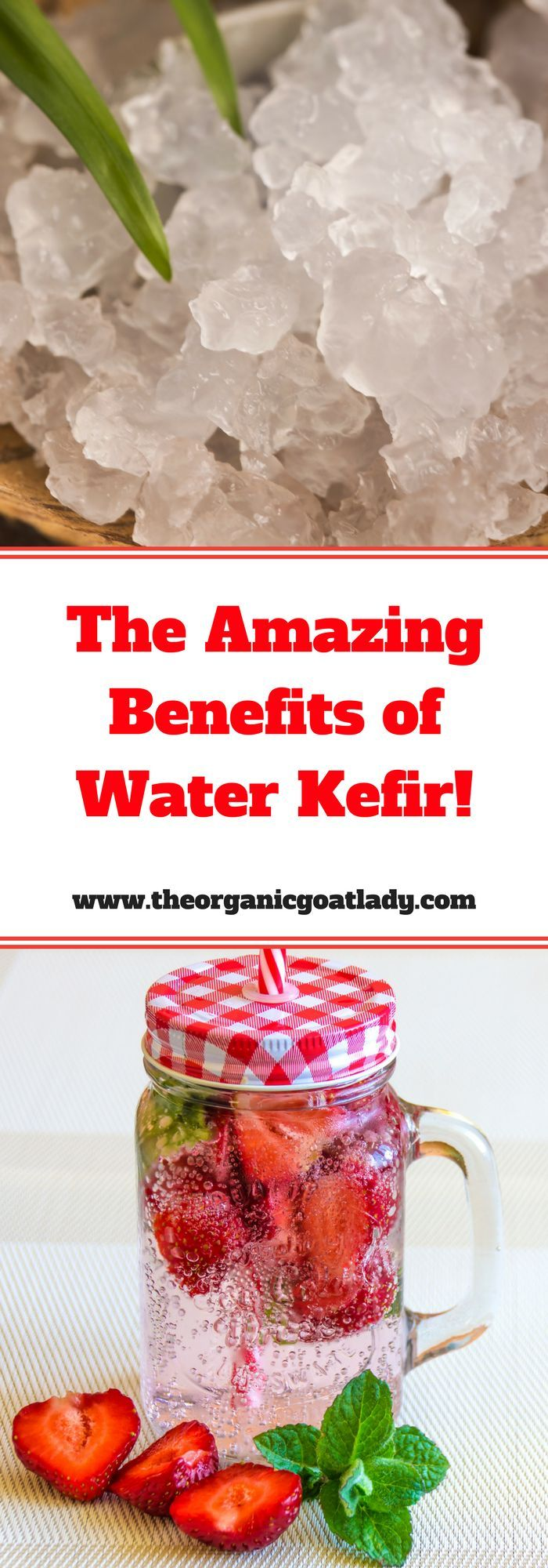Water Kefir: The Probiotic Beverage That Your Kids Will Love! | healthy kids | fermentation