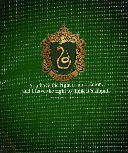 Slytherin: You have a right to an opinion, and I have the right to think it's stupid