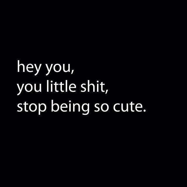 Hey you, you little shit, stop being so cute quotes quote girl quotes teen quotes