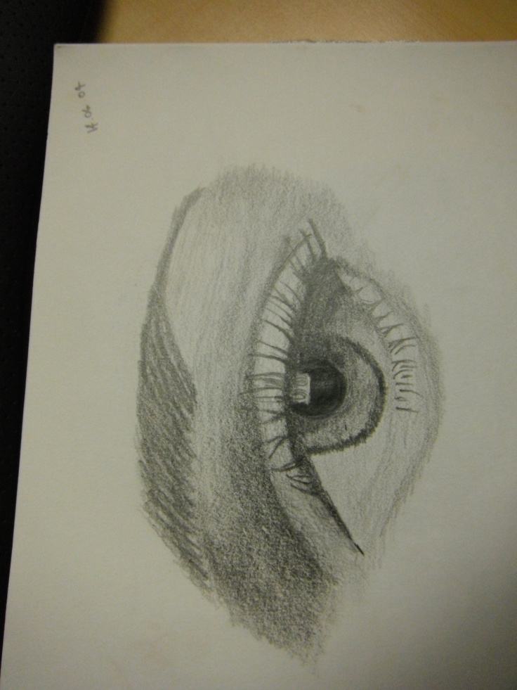 i love drawing eyes