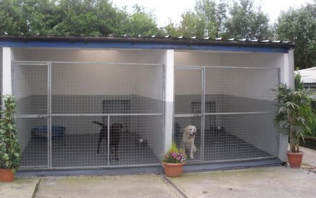 Dog boarding kennels in South Wales kennels Pinterest