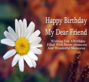Happy Birthday Wishes for Friend : Birthday Messages and Images for Friend