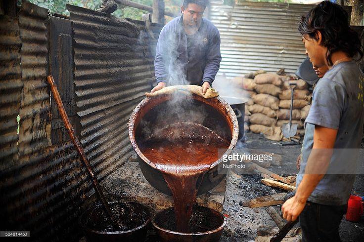 Preparation for Maghe Sankranti Festival. Locals pouring Molten Raw Hardened molasses on mud bucket to prepare molasses