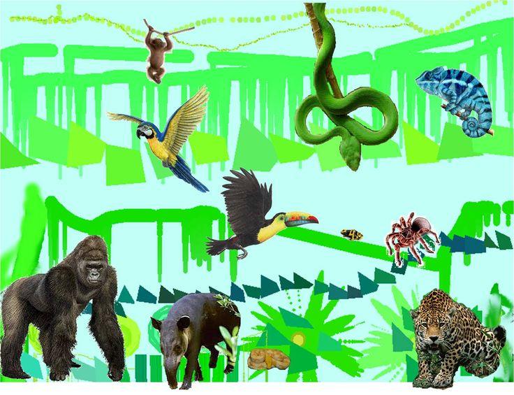 Jack's Jungle