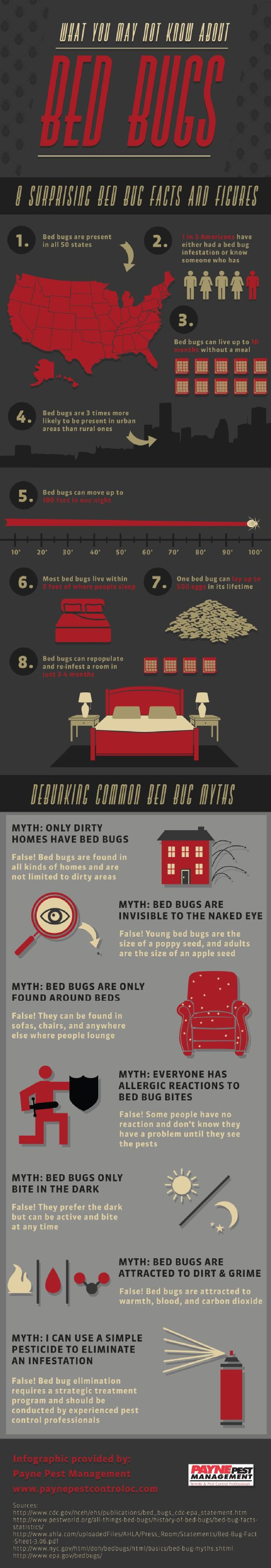 Many people think that bed bugs are only found around beds