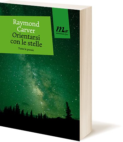 """Orientarsi con le stelle"" Raymond Carver"