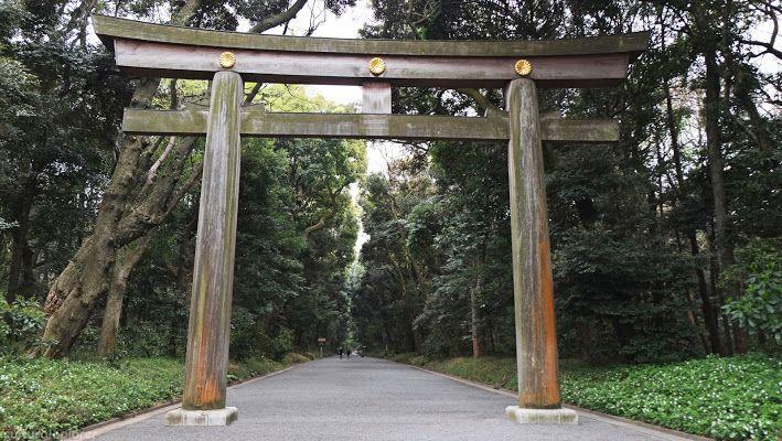 Yoyogi Park Torii Gate