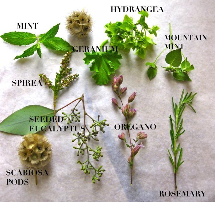 Healing Bouquets from a Brooklyn Herb Florist Gardenista: Brooklyn Herbs, Edible Arrangements, Bouquets Inspiration, Healing Bouquets, Design Seasons, Floral Bouquets, Brooklyn Bas, Herbs Florists, Healing Herbs