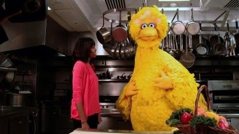 First Lady Michelle Obama and Big Bird Encourage Kids to Get Moving!