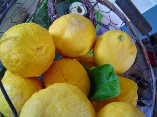 ONEIPA: Carrés au citron c'est de saison !