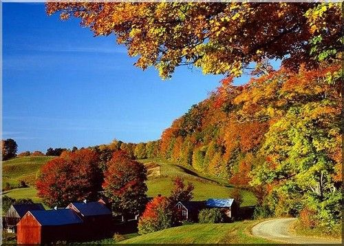 #Farm_holidays USA in the fall with trees and a farmhouse and barns rural paradise