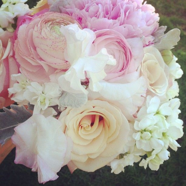 peonies blush pink, gold, and white - Google Search