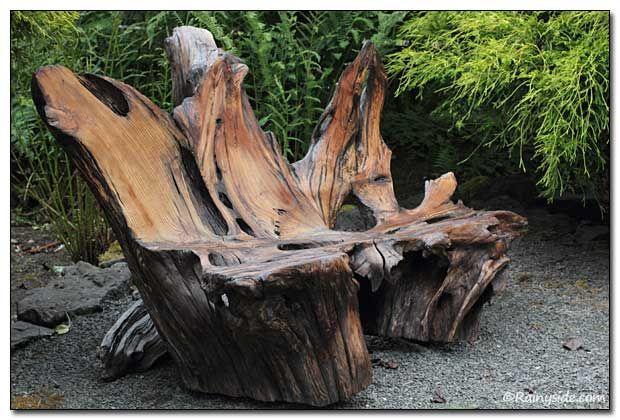 beautiful driftwood bench