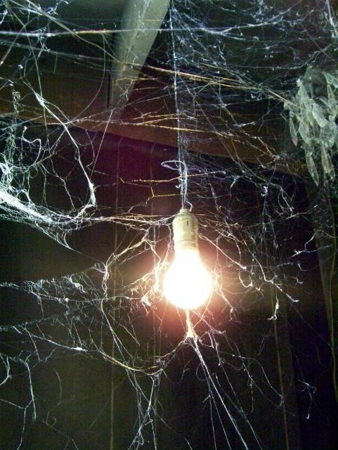 529 best creepy halloween images on pinterest halloween stuff halloween ideas and happy halloween