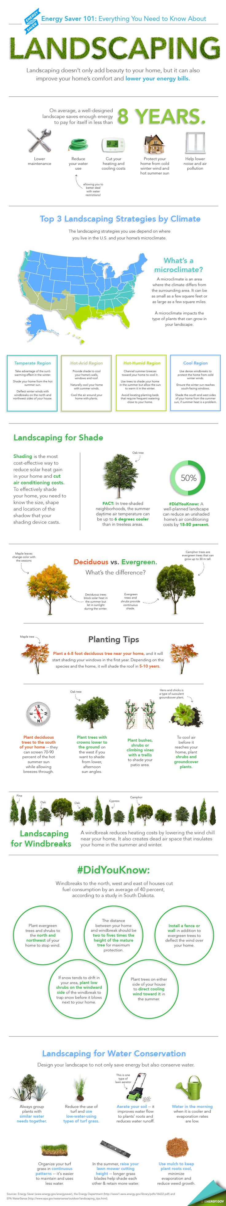 """Our new Energy Saver 101 infographic highlights everything you need to know to landscape for energy savings. Download a <a href=""""/node/898361"""">high resolution version</a> of the infographic or individual sections. 