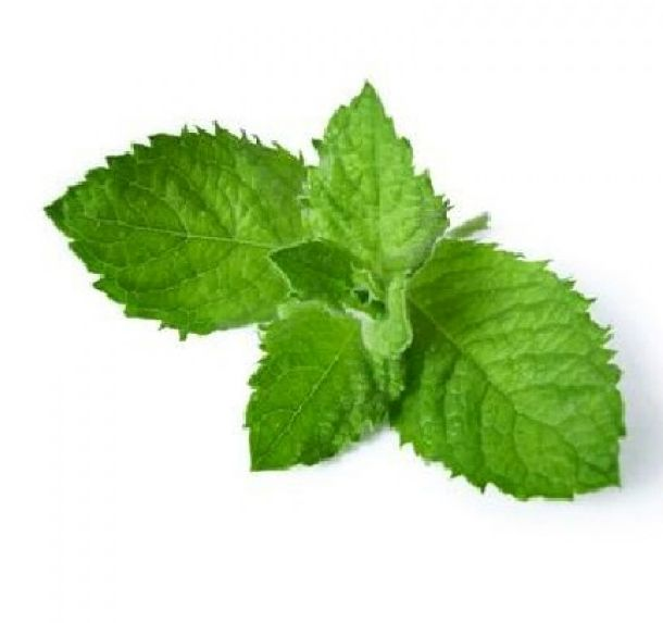 Menthol #EJuice! Choose your E-Juice Strength and Size/Base. Buy online for convenience $6.99 www.canadaejuice.com/menthol