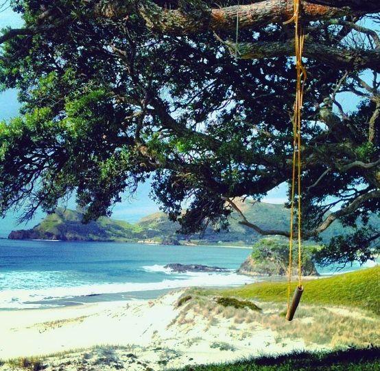 Swing over medlands