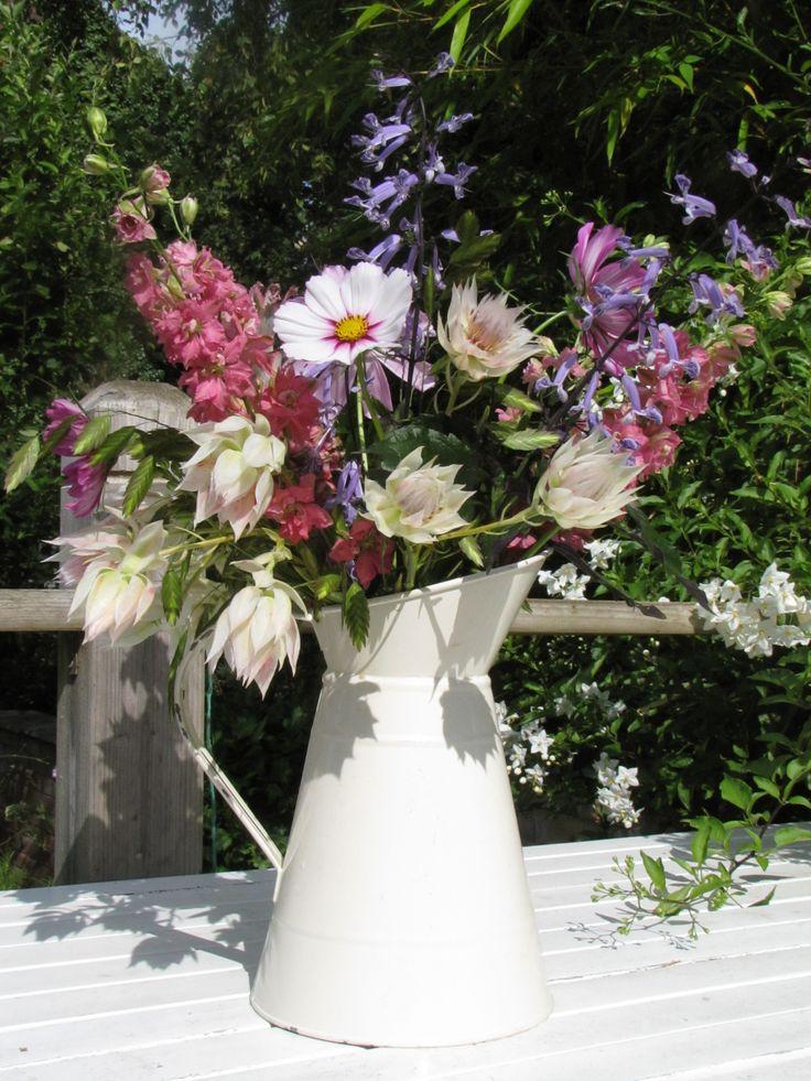 Flowers in the sun, Serruria, Cosmos and Delphinium